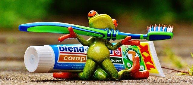 žába s kartáčkem